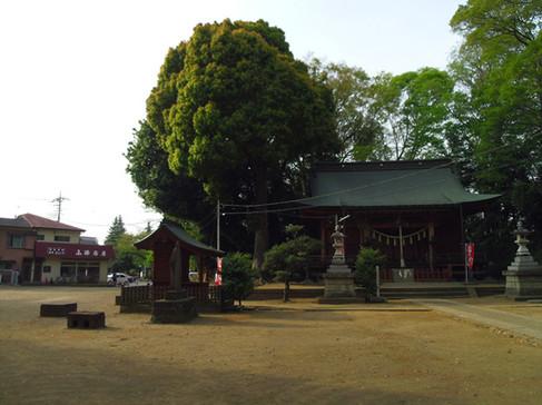 Miyoshino1